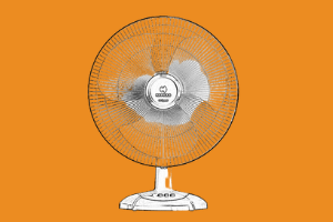Havells Table Fans