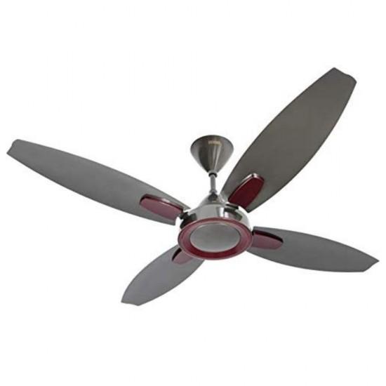 Usha Bloom Lily 1300mm Goodbye Dust 4 Blade Ceiling Fan, Sparkle Black & Maroon
